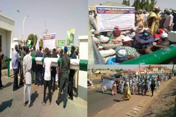 Gombe pensioners protest non-payment of pensions for several months