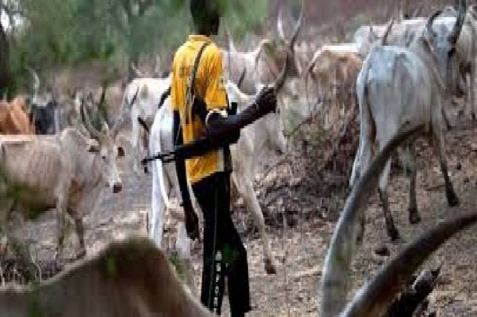 Suspected herdsmen kill three farmers in Owo LGA, Ondo