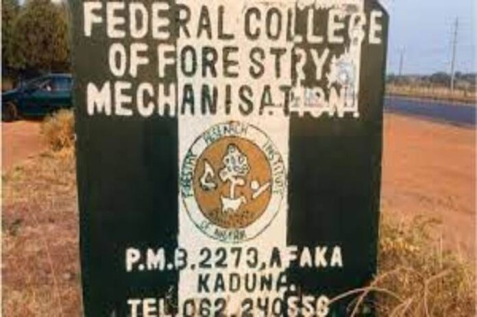 Abductors free 27 remaining Forestry Mechanisation College Students in Kaduna -