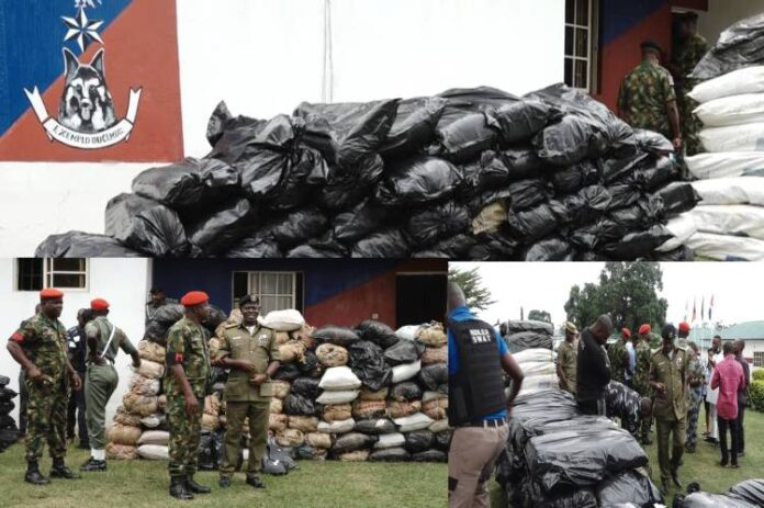 Soldiers intercept 132 bags of Indian hemp in Ondo